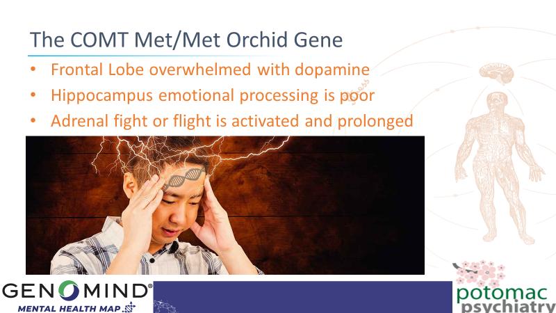 The-COMT-Met-Met-Orchid-Gene