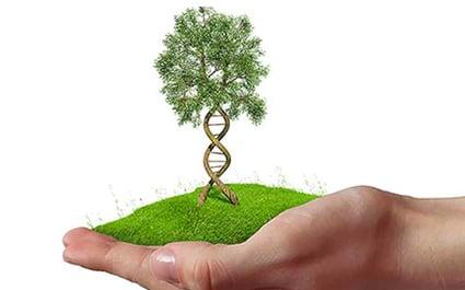 genetic-testing-wellness